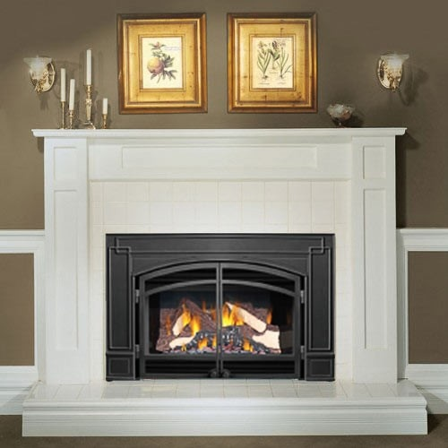 Napoleon Gi3600 Natural Gas Fireplace Insert With Arched Cast Iron Surround And Door Kit