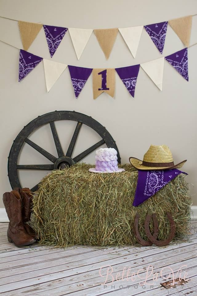 Cowgirl Cake Smash                                                       …