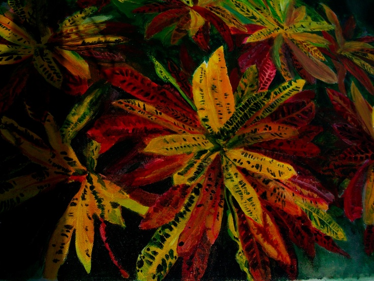 my painting of crotons.Sacasaca Croton