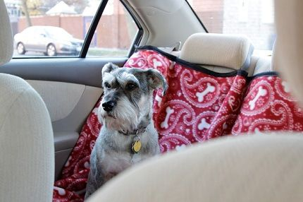 Tutorial: Back seat cover to protect your car from pet hair