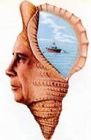 デリトン® (クロチアピン) 1970年 精神神経学雑誌
