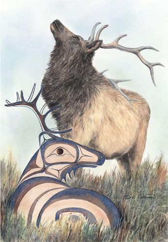 The Elk-  Sue Coleman  //  WHAT AN AWESOME ARTIST !!
