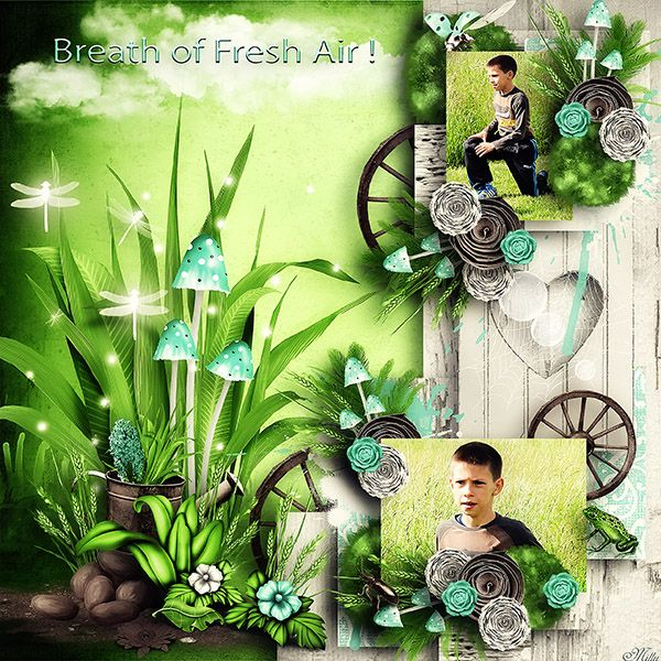 Breath of Fresh Air - Scenic Items,Traditional by Celinoa's Designs template An adventurous journey by Tinci Designs