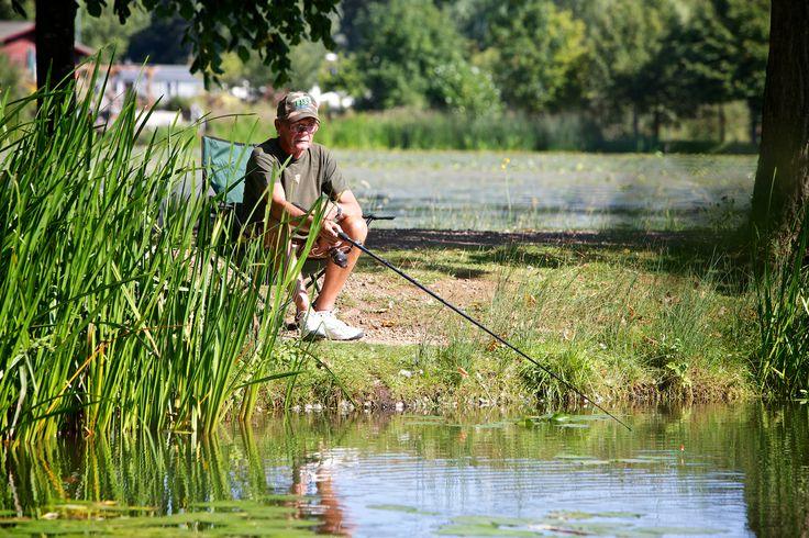 Fishing in Northamptonshire at http://www.billingaquadrome.com