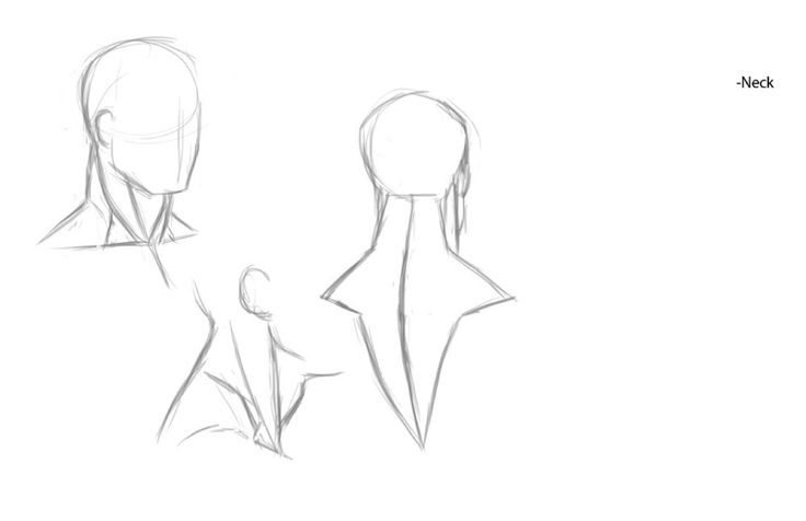 Character Design Tips And Tricks : Best images about character anatomy neck on pinterest