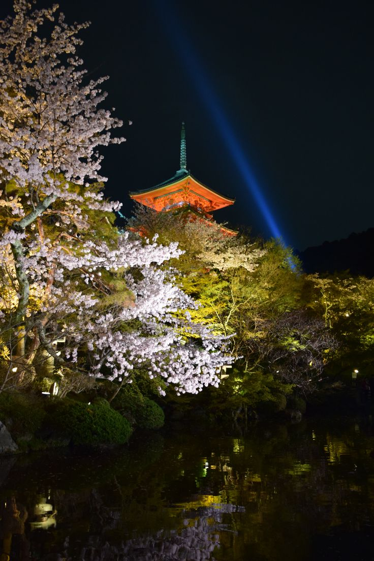 Night temple, Kyoto