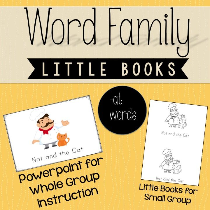 FREEBIE! Word Family Little Books with a full size color copy Powerpoint to use whole group. Kiddos have a copy in their hand and you can present the book from the front of the room whole group!