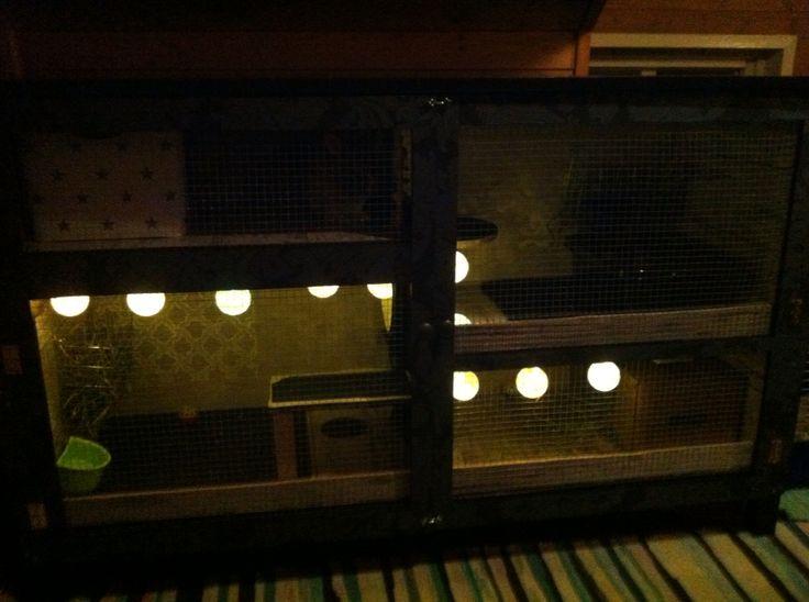 Har også hengt opp lyskuler som går på batteri og blir ikke varme. Kjøpt på Nille.