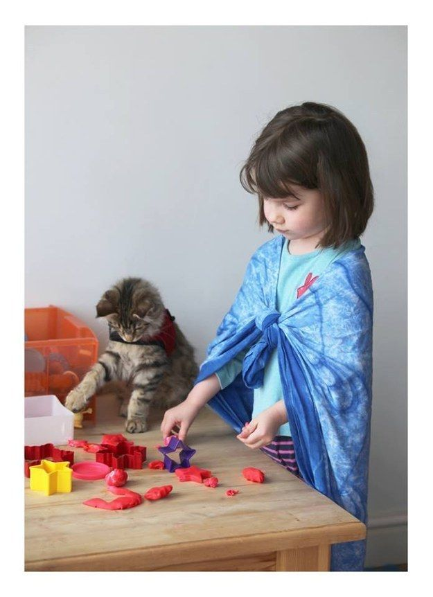 Maine Coon kitten playing PlayDoh with her human.
