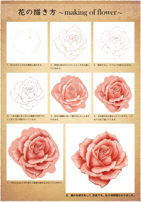 pixiv Spotlight - Tutorials on how to draw roses!
