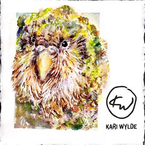 The kākāpō painting is complete, see the video on YouTube https://youtu.be/B-oy4L0EF-8  Please feel free to place feedback, subscribe to…