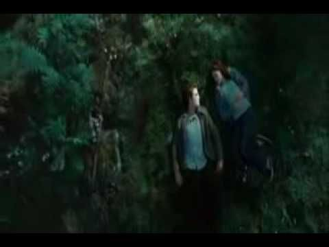 """Paramore """"I Caught Myself"""" from the Twilight Soundtrack...contrary to what the video says it is not the """"official"""" video for this song. Paramore never made a video for this song, but it is a decent fan made video and a fantastic song. One of my favorites from the original soundtrack."""