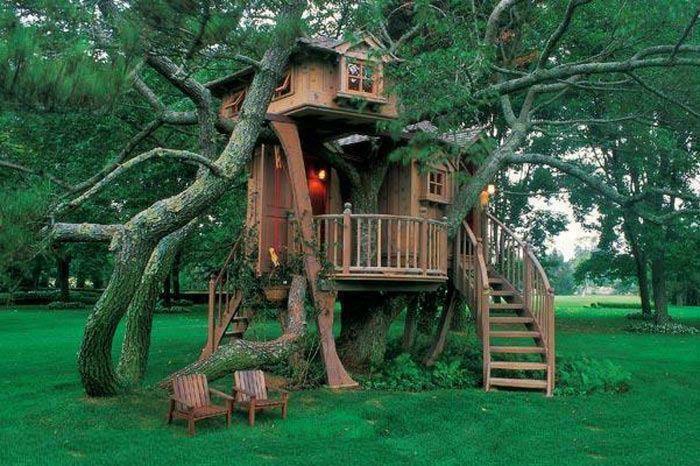 Casa-arbre