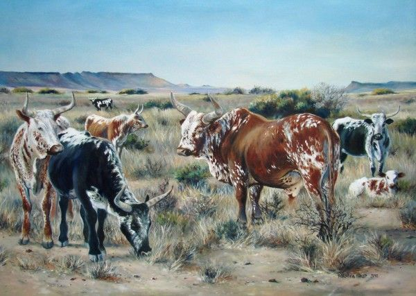 Karoo Landscape with Nguni Cattle by Barbara Philip