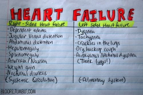 **Reblog** Cardiac-Heart Failure notes. For those studying cardiac. bloopz:  Here is an upload of my personal notes of signs and symptoms of Heart Failure (left and right-sided).
