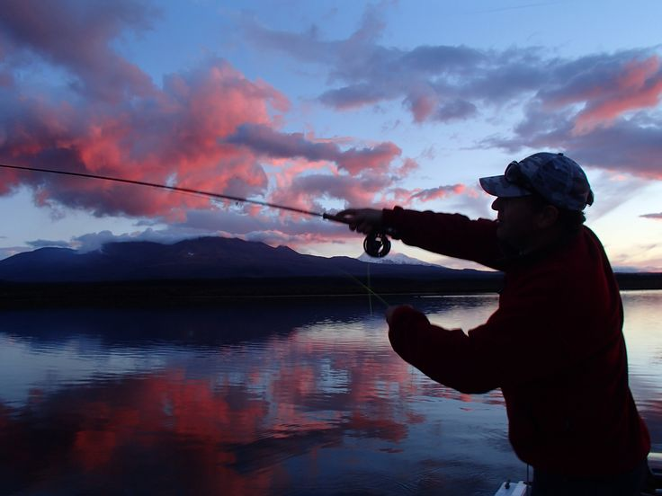 37 best fly fishing on taupo stillwaters images on for Shadow fly fishing