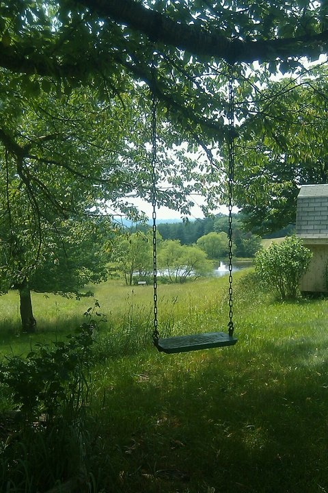 the tree swing i played on every summer day. in my mid-twenties.