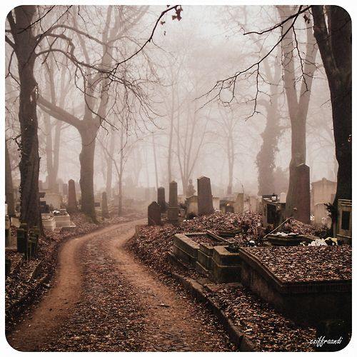 """""""Why are we here? Graveyards are creepy..."""" """"Don't be scared. Just hold your breath as we go past and the spirits won't know we're here."""""""