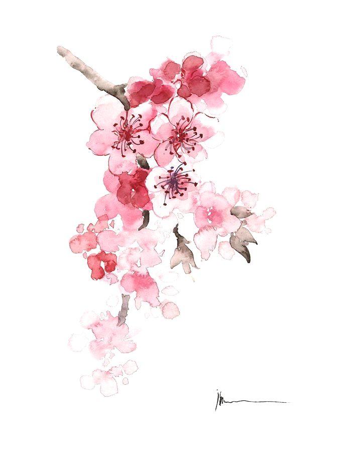 7 Minimalist Tattoo Ideas Cherry Blossom Watercolor Cherry Blossom Tattoo Cherry Blossom