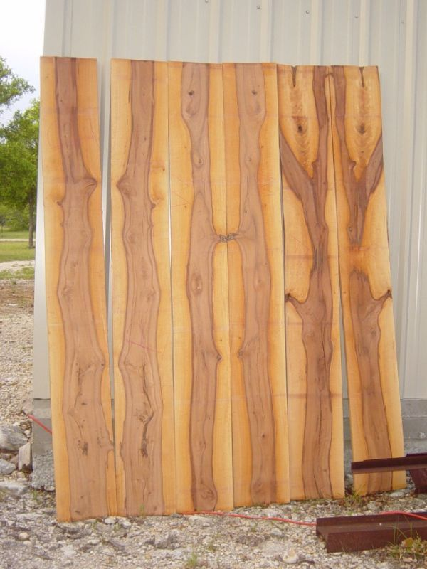 52 Best Wood Identification Images On Pinterest Wood