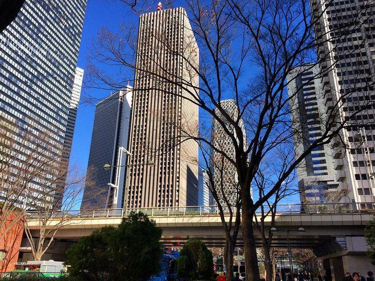 東京はこのように晴れていますかが風が吹いていてとても寒いです#shinjuku #tokyo #coldweather