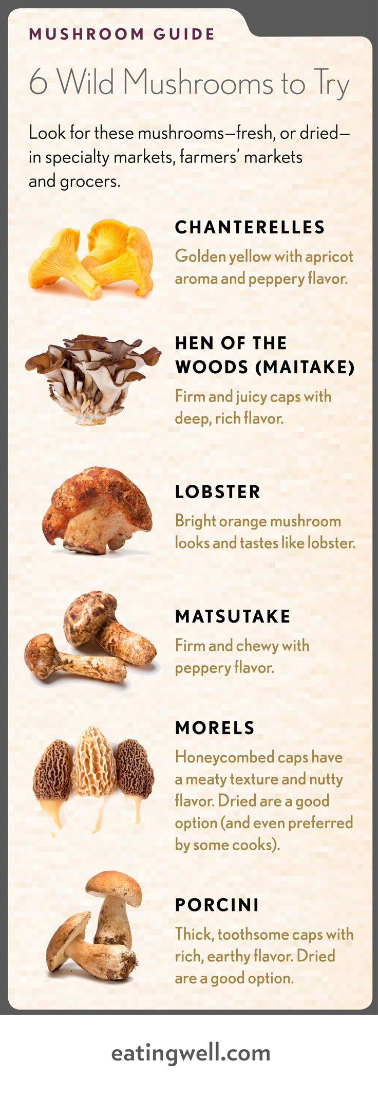 Our favorite wild mushrooms plus recipes.