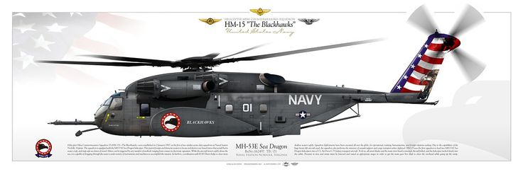 "UNITED STATES NAVY HELICOPTER MINE COUNTERMEASURES SQUADRON FOURTEEN (HM-15) ""The Blackhawks"". Naval Station Norfolk, Virginia"