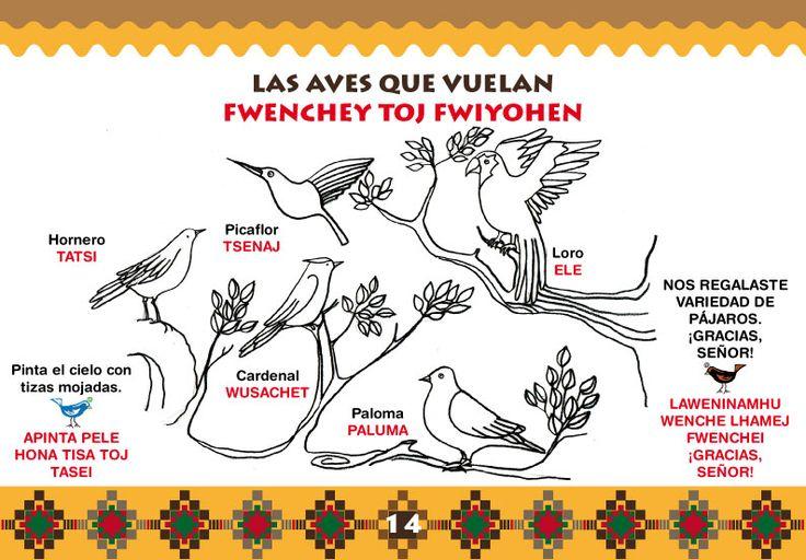 Libro de catequesis bilingüe español y wichi dibujado por Crischu