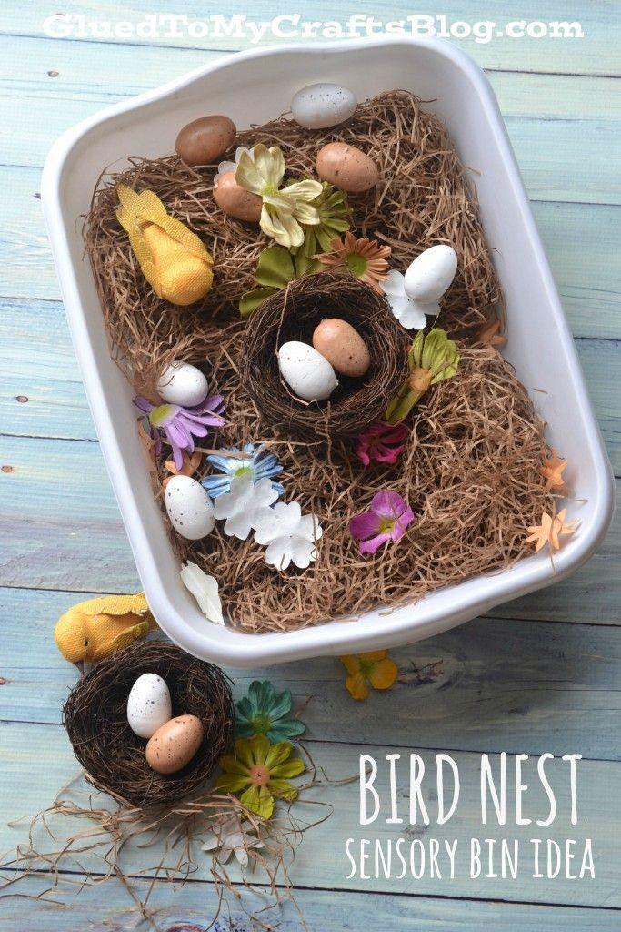 Bird Nest - Sensory Bin Idea