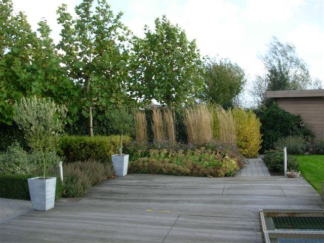 strakke tuin met siergrassen siergras pinterest