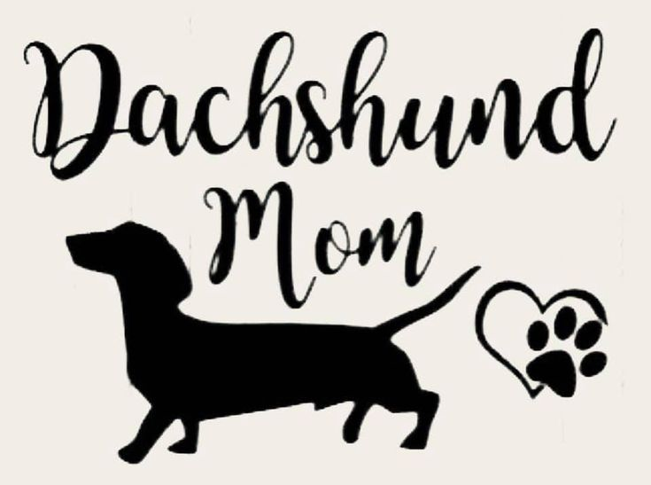Sticker Tan Dachshund Car Sticker Pet Sticker Car Decal Etsy
