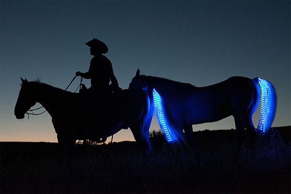 Tail Lights for horses!! There are also three brightness settings: low, for group rides; medium, for solo rides, bright enough to be seen from about a half mile away; and high, a brilliant yellow strobing pattern for emergency situations....Sarah we need these!!!