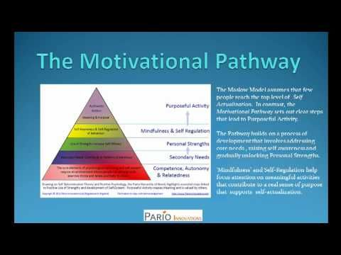 Motivation Theory | Maslow's Hierarchy of Needs Pyramid | Motivation at Work - Part 1 - YouTube