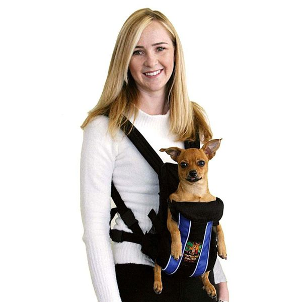 Dog Front Backpack Carrier   Legs Out Front Dog Carrier with Blue Stripes at BaxterBoo