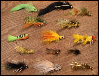 So many fly patterns for bluegill and bass.
