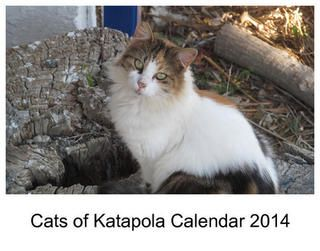 Cats of Katapola Calendar 2014.  Photos of cats at Katapola on Amorgos, one of the islands in the Cyclades, Greece. I created this calendar for family and friends, but you may like it too!
