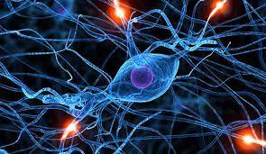 #Salud Esclerosis Lateral Amiotrófica (ELA) una enfermedad que afecta a todos   Los síntomas se relacionan con pérdida de fuerza en los músculos del cuerpo dado que dejan de funcionar las neuronas motoras que son las que producen los movimientos.  El próximo 21 de junio es el Día Mundial de la lucha contra la Esclerosis Lateral Amiotrófica (ELA). Para conocer más sobre esta enfermedad el neurocirujano del Centro Médico Deragopyan el Dr. Jaime Rimoldi (MN 53880) explica que la Esclerosis…