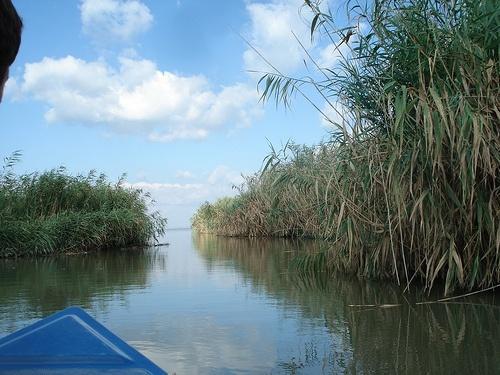 Delta Dunarii 08