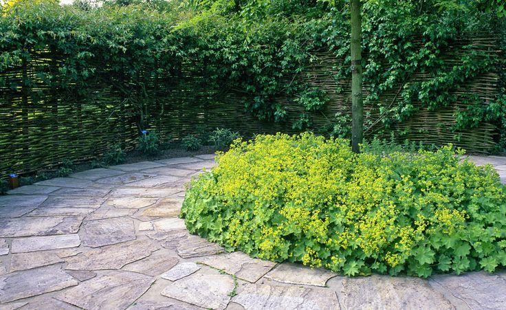 326 besten gartengestaltung bilder auf pinterest for Gartengestaltung zeichnung