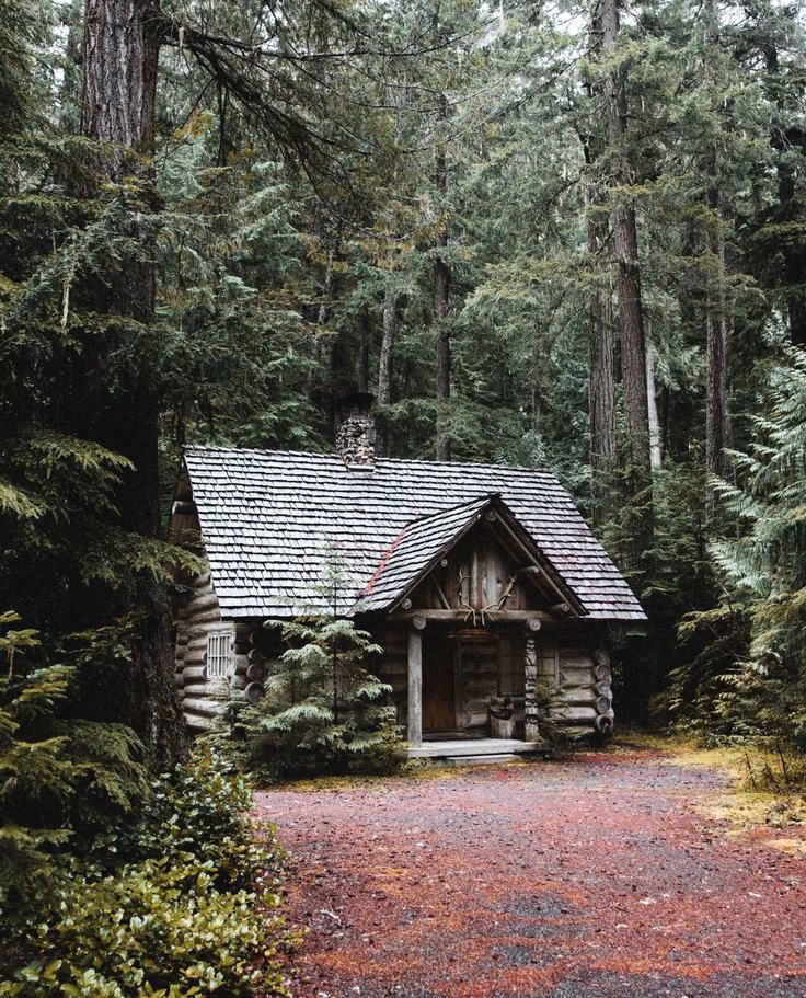 Best 25 Witch Cottage Ideas On Pinterest Witch Home