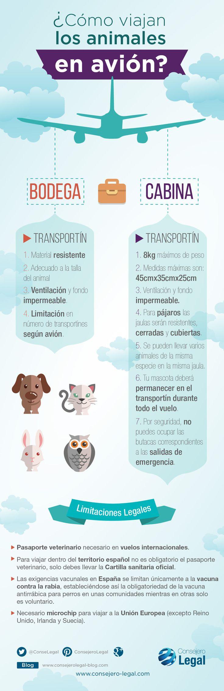 Cómo viajar con mascotas en un avión (infografía). Descubre qué debes hacer para poder viajar con tus mascotas en avión y que debes cumplir. Consejero Legal