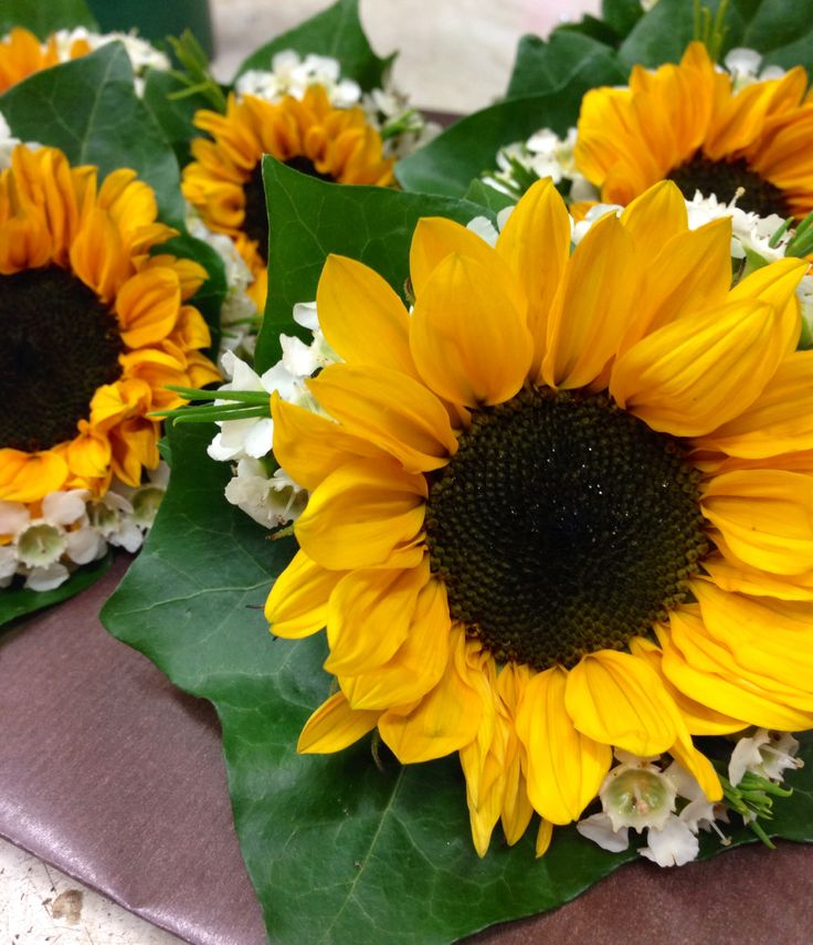 Mini sunflowers are a perfect buttonhole for a late summer wedding x