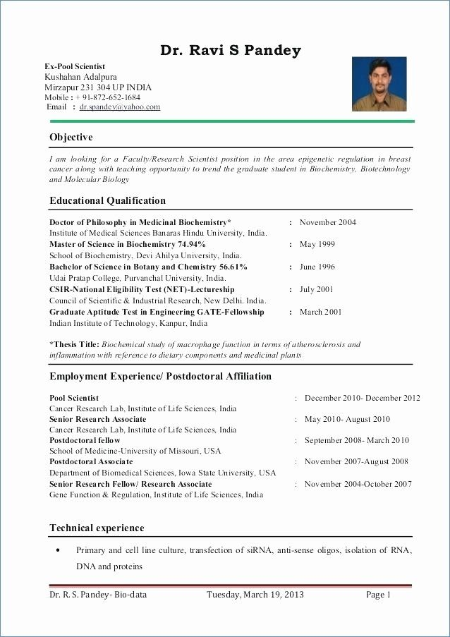 Resume Format For Zoology Lecturer ResumeFormat