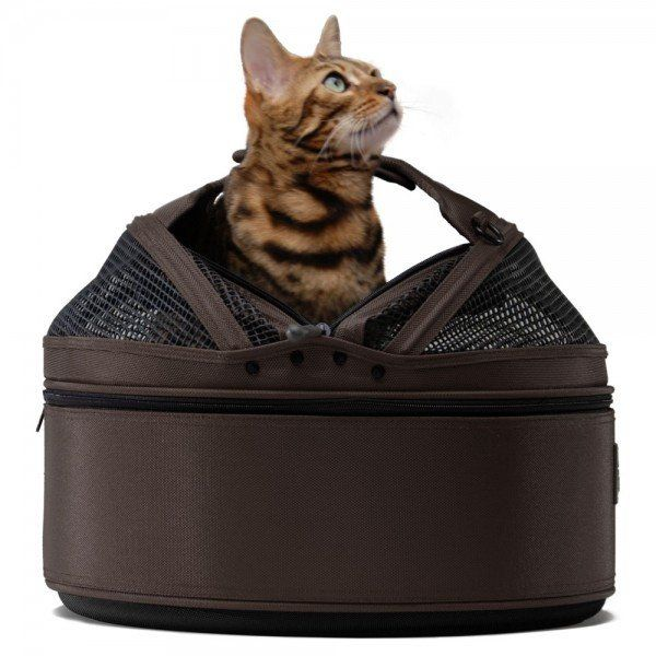 Sleepypod Medium Mobile Pet Bed, Dark Chocolate Pet Carrier – PetsOwnUs