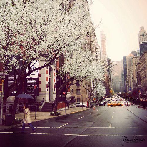 NY, I <3 U