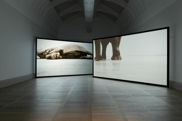 Douglas Gordon 'Play Dead; Real Time (this way, that way, the other way)', 2003 © Douglas Gordon