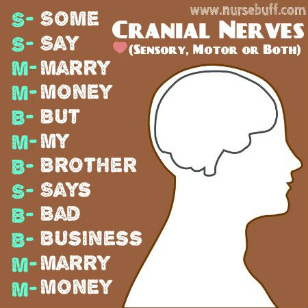 50 Nursing Mnemonics and Acronyms: http://www.nursebuff.com/nursing-mnemonics-and-acronyms-respiratory-endocrine-and-nervous-systems/