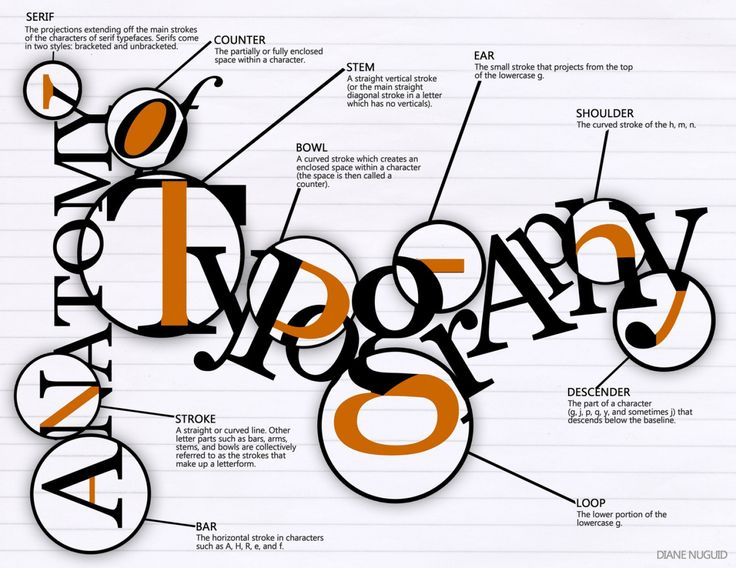 41 best anatomy of type images on pinterest typography lettering and type anatomy