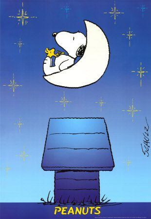 Snoopy and Woodstock on the moon