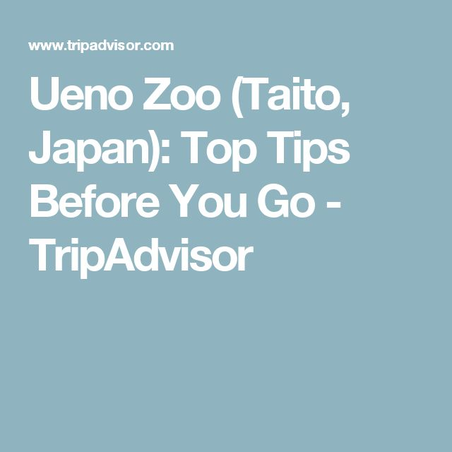Ueno Zoo (Taito, Japan): Top Tips Before You Go - TripAdvisor